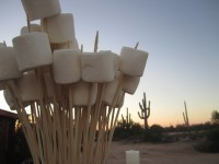 Jumbo Marshmallows for a Cookout S'mores Station