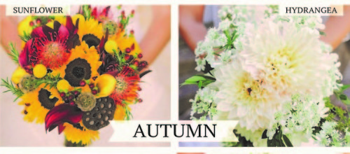 October blog